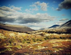 Norwegen 2011 – Teil 1 Rondane