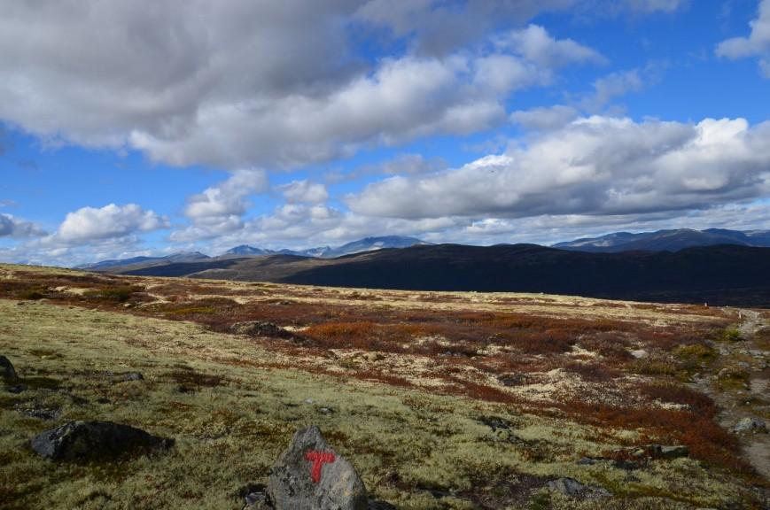 Norwegen_2011_0340