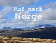 Unterwegs mit Børge, Andreas und Johanna – Auf nach Norwegen!