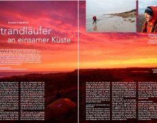 An Silvester in Dänemark – neu im Nordis Magazin