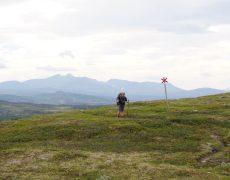 Von Røros nach Teveltunet – Runners highs und feine Menschen